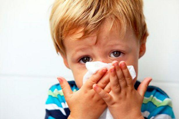 Placeholder - loading - Imagem da notícia Começou a campanha de vacinação contra a gripe