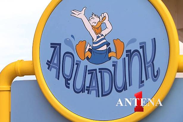 Placeholder - loading - Disney Cruise Line: o que é o Aqua Dunk?