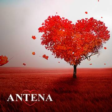 "Semana dos Namorados na Antena 1 – ""A Thousand Years"" Background"