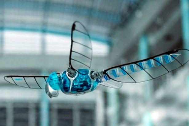 Placeholder - loading - Empresa está criando libélula ciborgue Background