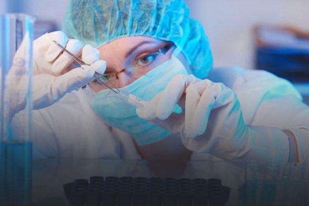 Brasil e Portugal têm os maiores percentuais de participação feminina na produção científica Background
