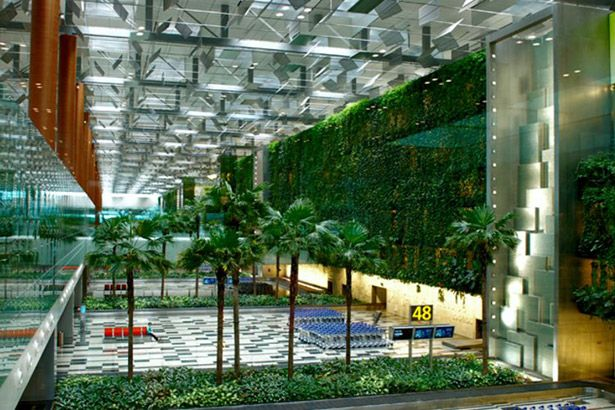 Aeroporto de Singapura é eleito o melhor do mundo no Skytrax World Airport Awards Background