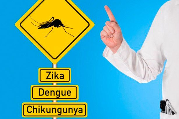 Anvisa faz registro de novo teste para zika, dengue e chikungunya Background